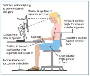 Ideal Working Posture